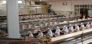 Lee más sobre el artículo AISLASUR con la fresa de Huelva