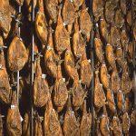 Instalaciones para curado de jamones y embutidos AISLASUR